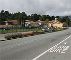 Miller Avenue Medians – City of Mill Valley